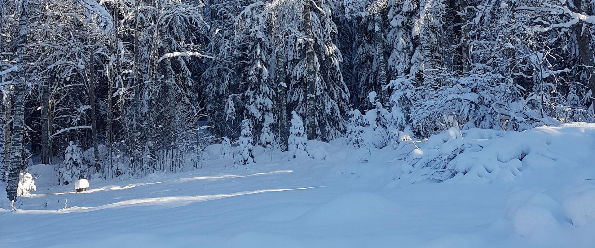 こちらで自然の穏やかさをお楽しみ下さい!